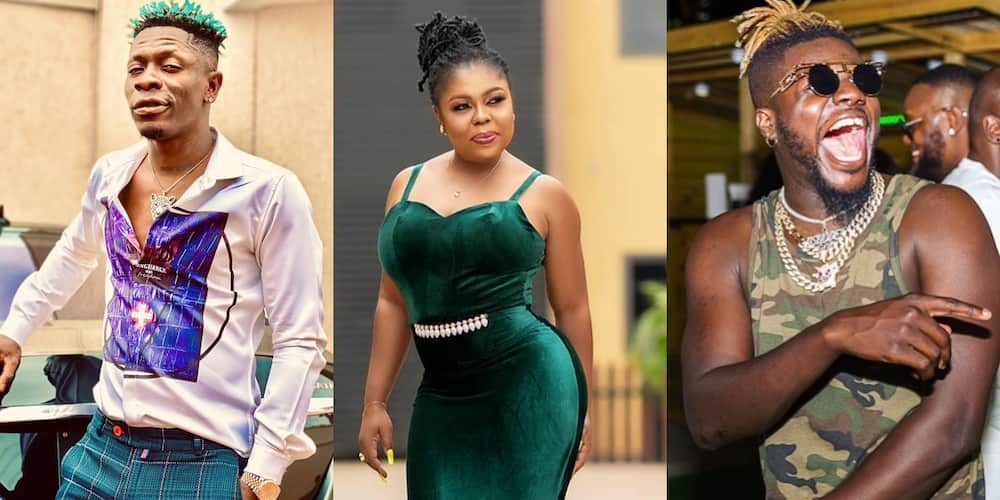 """Shatta Wale, Afia Schwar and 3 other celebs who have declared """"4 more for Nana"""" ahead of 2020 election"""