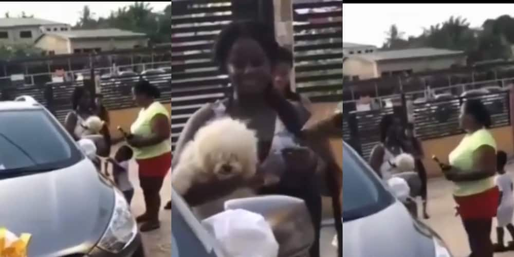 Parenst buy 'fresh' car for their daughter for 'blowing' 2020 WASSCE exams