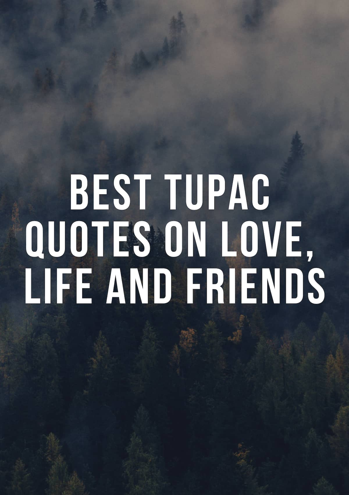 Best Tupac Quotes On Love Life And Friends Yen