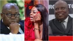 Nana Aba Anamoah wades into Amidu-Nana Addo tug of words