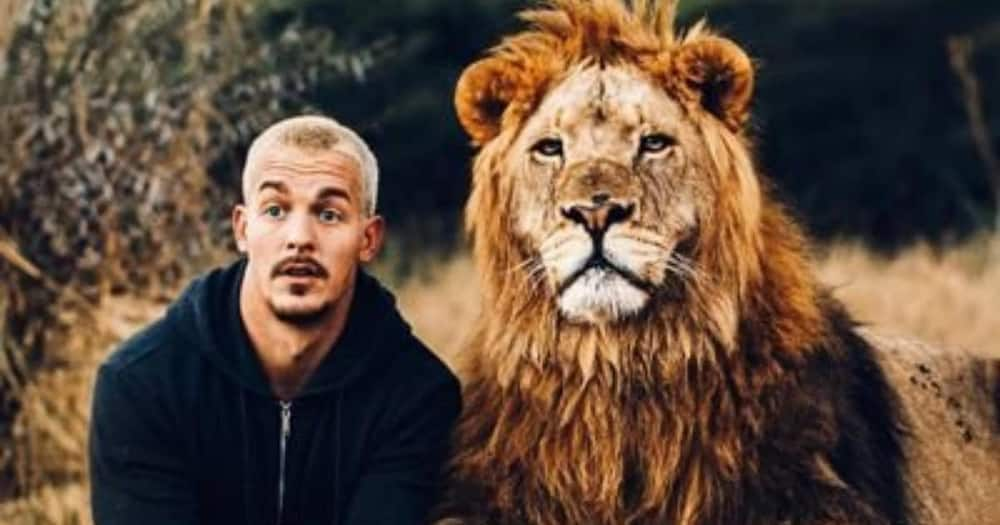 """""""Lions Ain't Pets"""": Man Advises People Against Playing With Lions"""