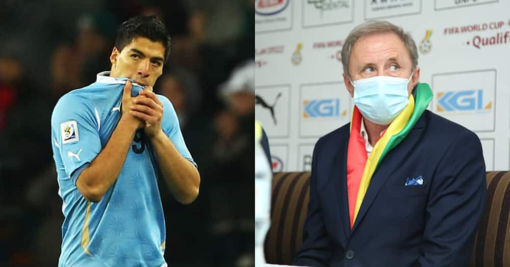 If not for Suarez we would have been World Champions - New Ghana coach Milovan Rajevac