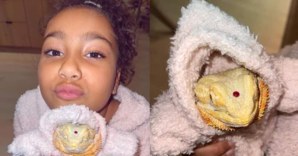 Kim Kardashian's daughter North West gets matching outfits with pet lizard