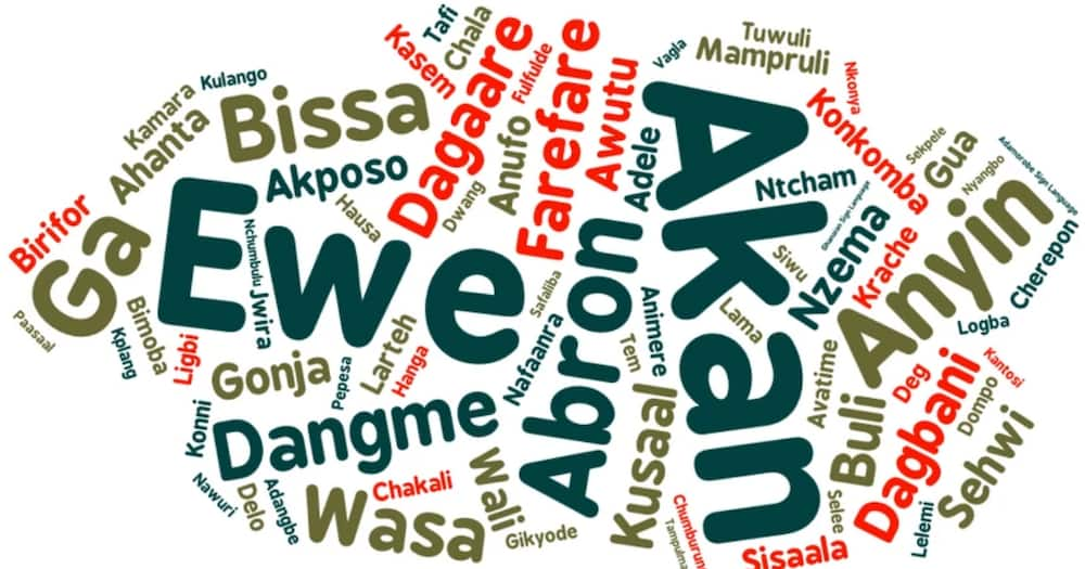 Ewe is the 2nd most spoken language in Ghana with 3.82million speakers - Report reveals