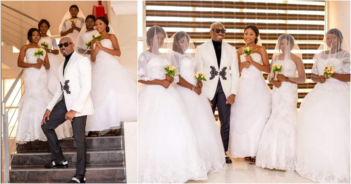 Video & photos of how rich kid stormed wedding with 5 pretty ladies cause stir