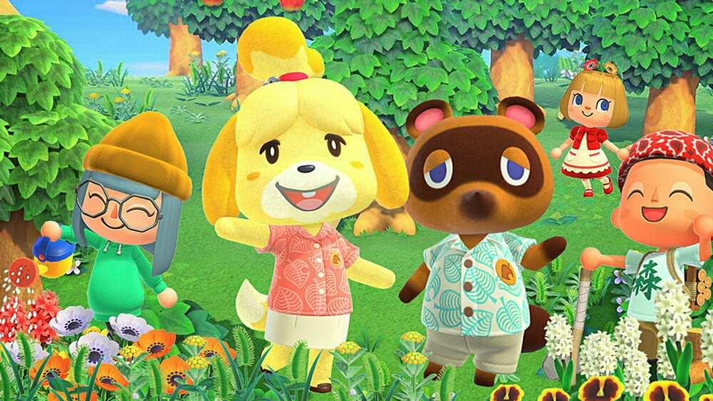 Animal Crossing memes