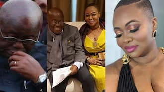 Akufo-Addo used National Security to rob me after i rejected his love proposal - Serwaa Broni