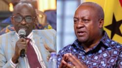 Asiedu Nketiah's testimony was taken out of context to dismiss petition – Mahama