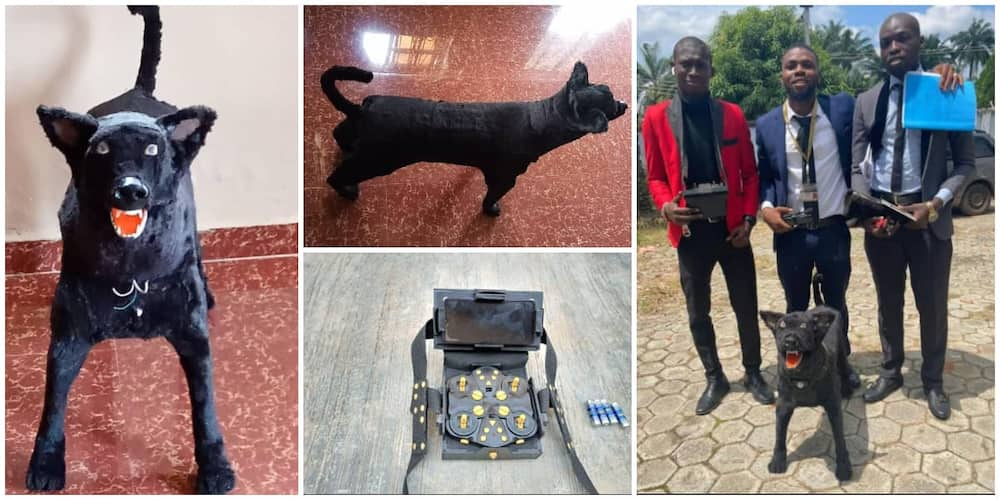 Nigerian students create robotic dog that is controlled with remote as final year project, photos cause stir