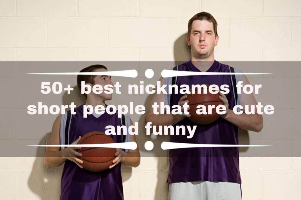 nicknames for short people