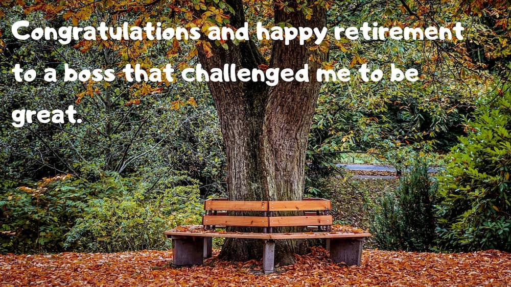 Retirement card messages