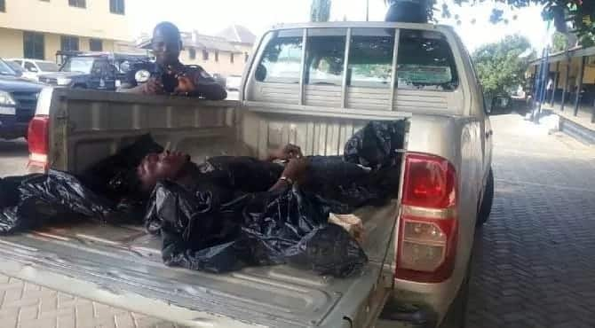 Robber kills colleague during robbery