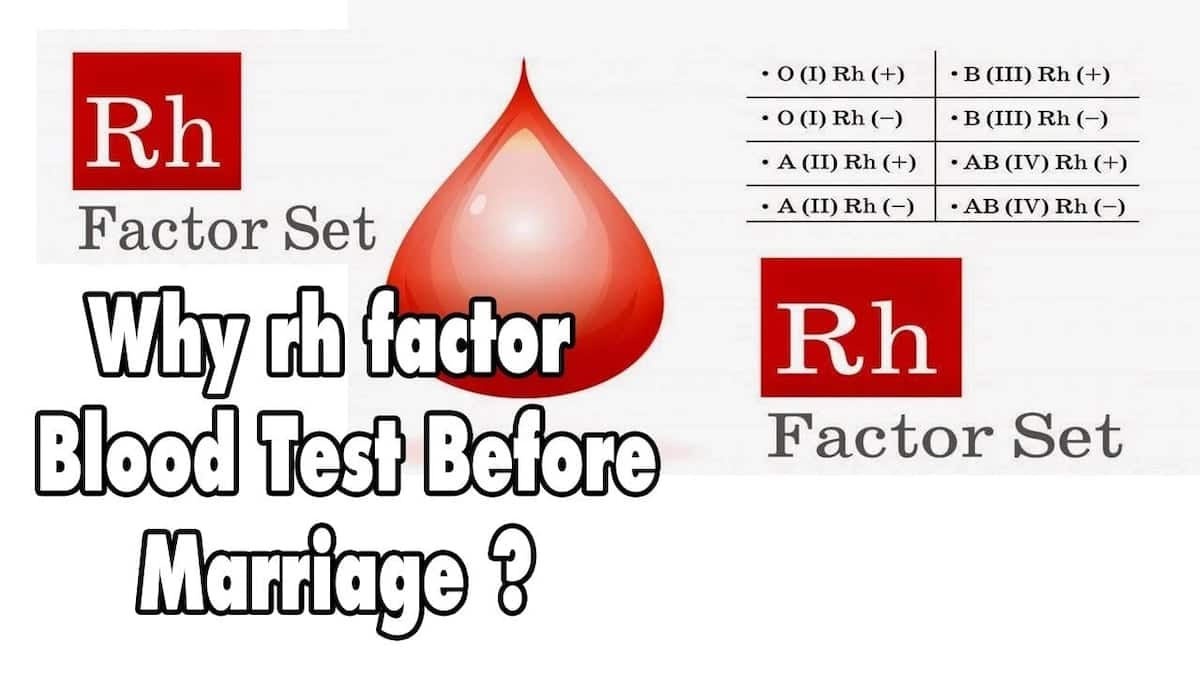 Best Blood Group Compatibility for Marriage ▷ YEN COM GH
