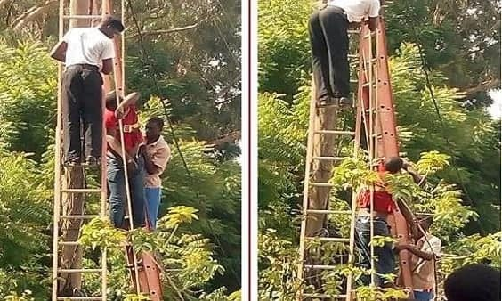 Power officers removing trapped man from high tension pole