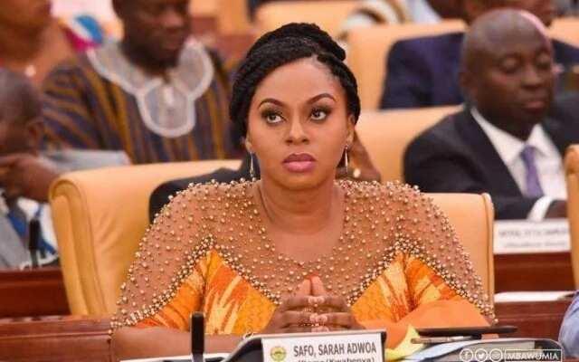 Dome Kwabenya SHS scandal won't destroy Adwoa Safo - Fritz Baffour