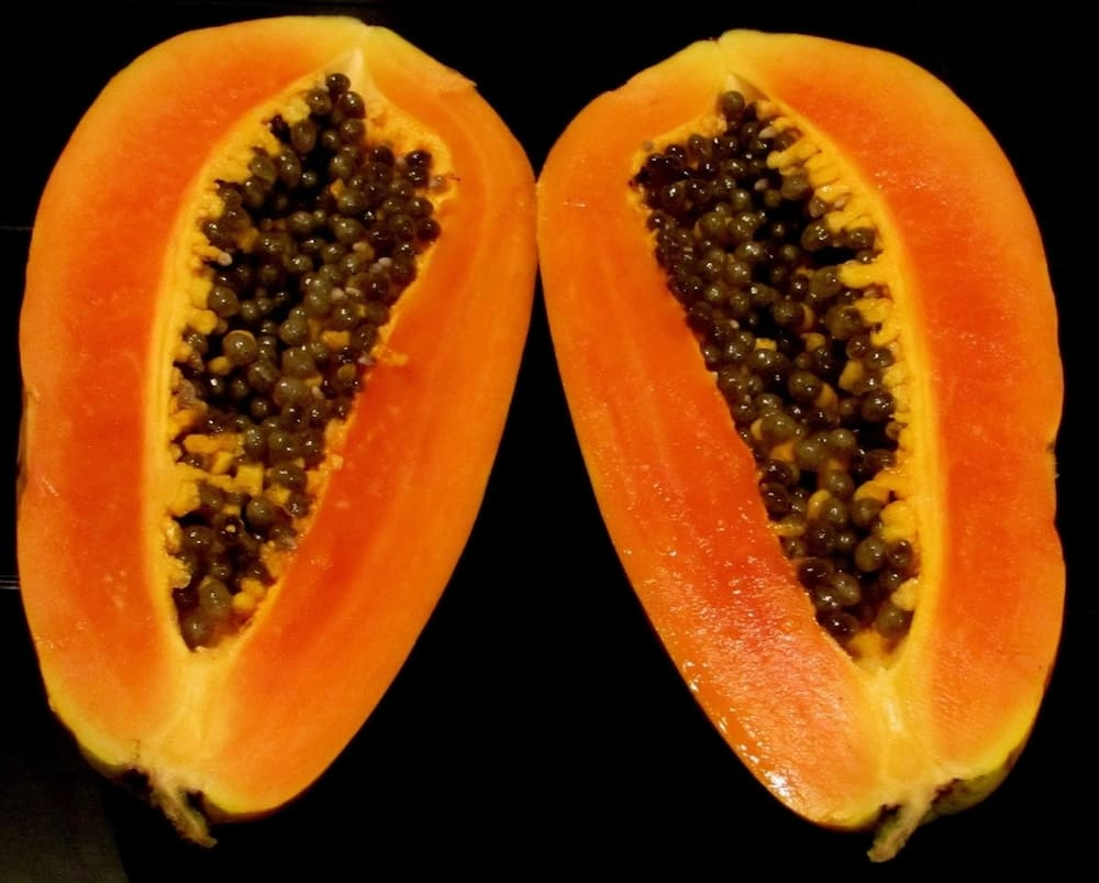 pawpaw leaves and weight loss pawpaw leaves and fertility papaya leaves cure for dengue papaya leaves extract