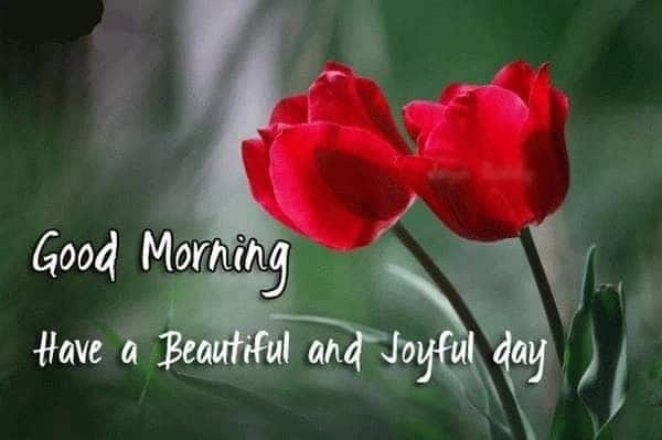 good morning poems for someone you love good morning beautiful love poems love poems for her