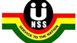 NSS Pin Code 2020: how to obtain
