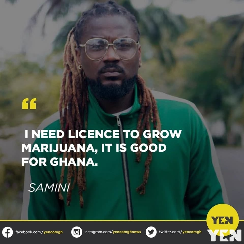 Social media users react to Samini's view about acquiring license to grow and sell wee