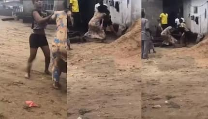 Woman beaten to pulp for allegedly stealing pot of soup
