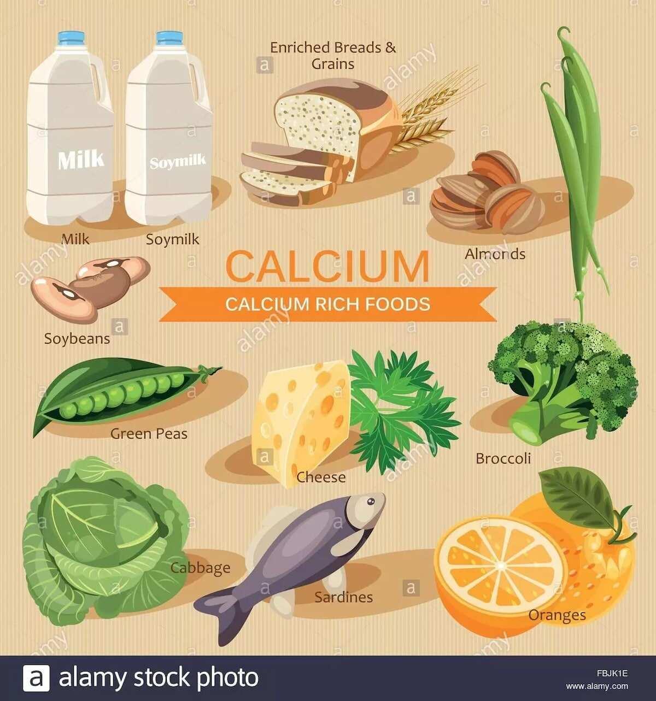List of best food rich in calcium for healthy bones