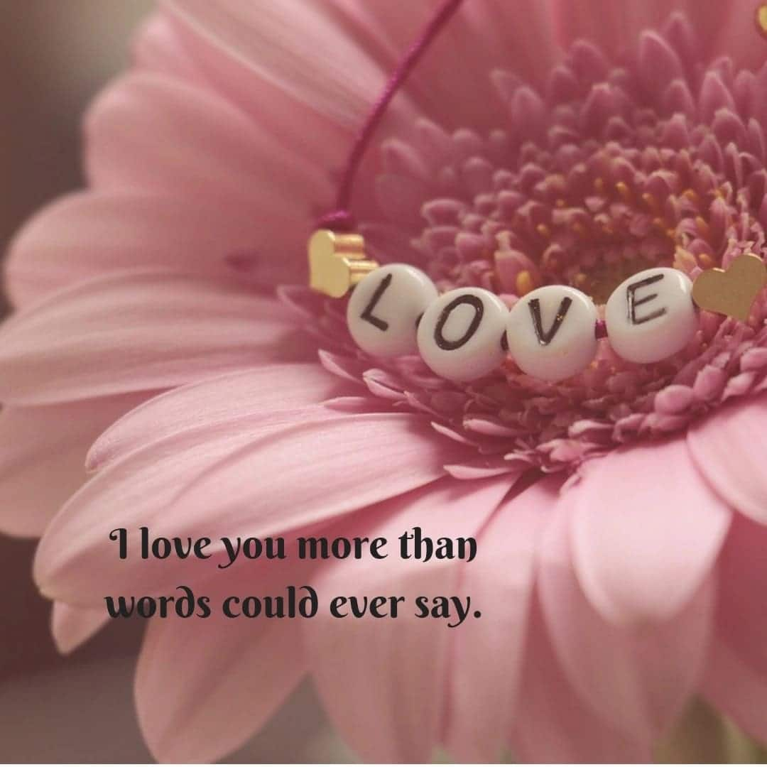 Love message for her Love flowers Beautiful flowers Flowers images