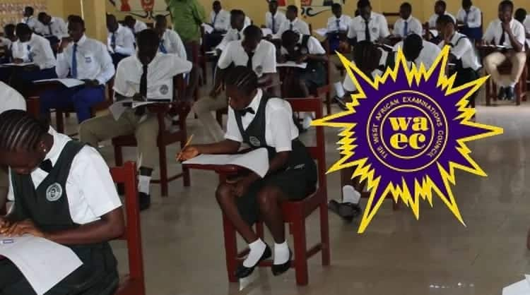 How to check WAEC results? ▷ YEN COM GH