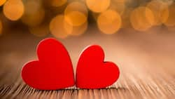 Most amazing romantic messages for your lover