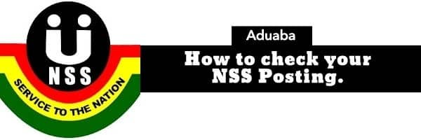 nss pincode nss pin code request nss pin code check