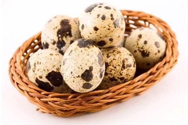 Raw quail Eggs Benefits for Adults