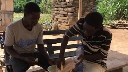 Meet the boys who have converted cassava into electricity