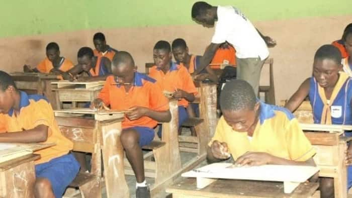 Over 40 Sacked Teacher Trainees Beg Authorities To Resit Their Papers