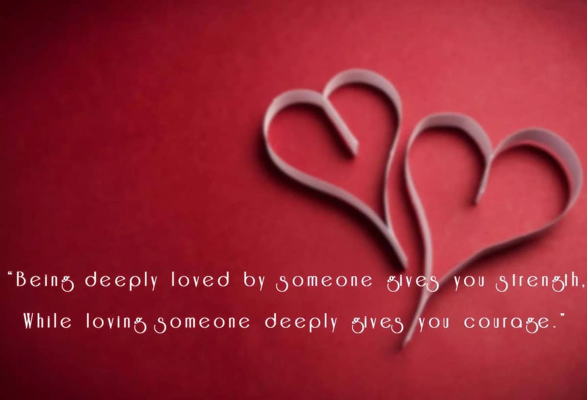 Best Short Valentine Quotes for Everyone