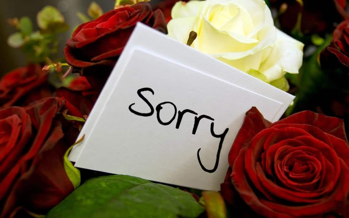 i want apology message powerful apology message deep apology message