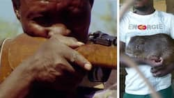 In Eastern Region: Hunter mistakes colleague for grasscutter; shoots him dead