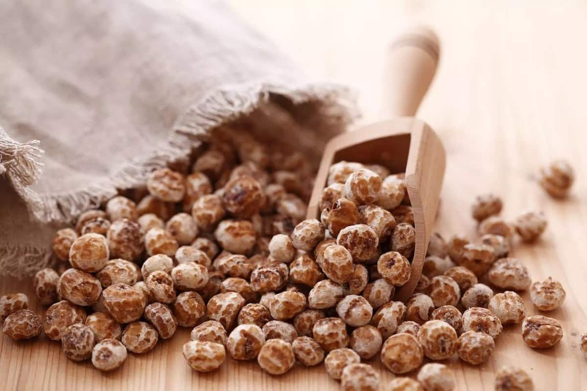 Truth About Tiger Nuts and Sperm Count