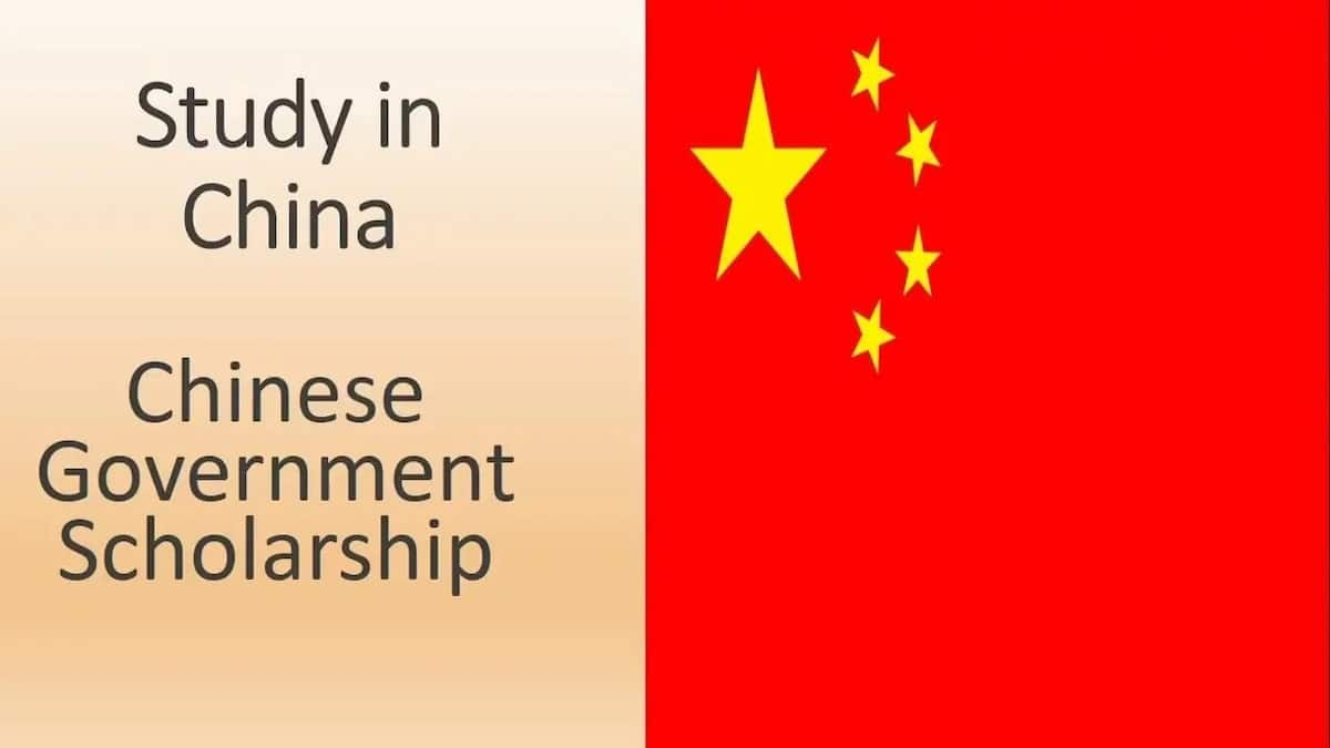 Chinese government scholarship online apply
