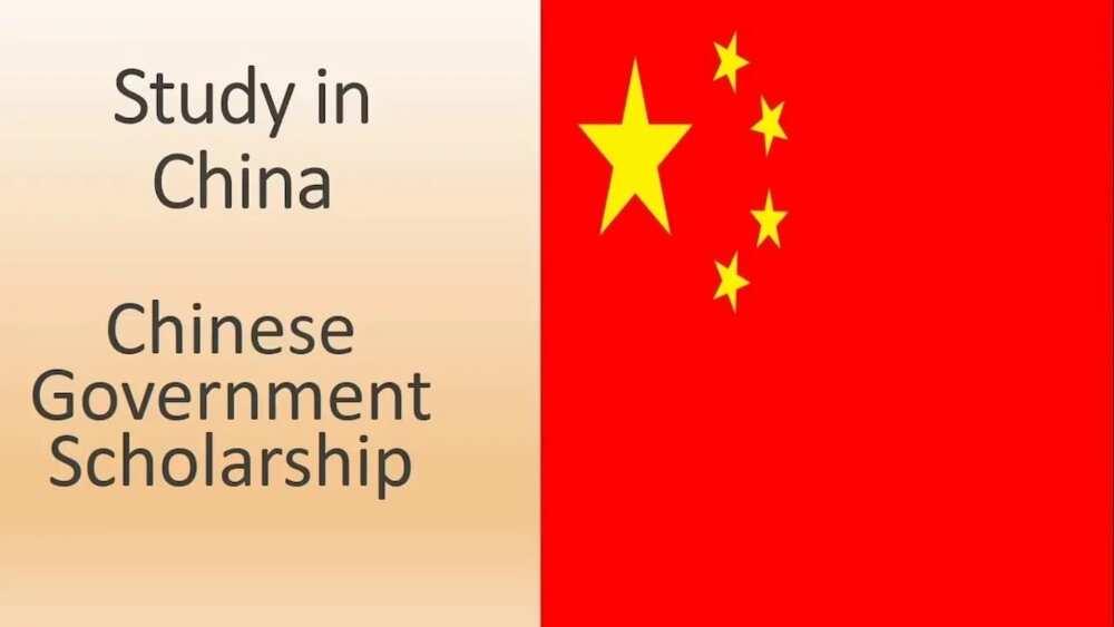 China scholarship - Chinese government scholarship online