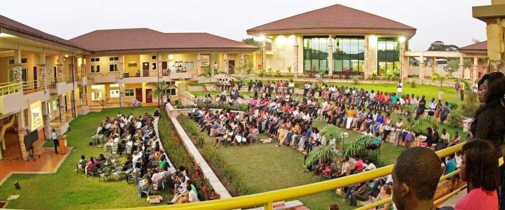 Ashesi University Courses