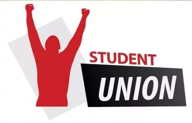 How to write a manifesto for student election