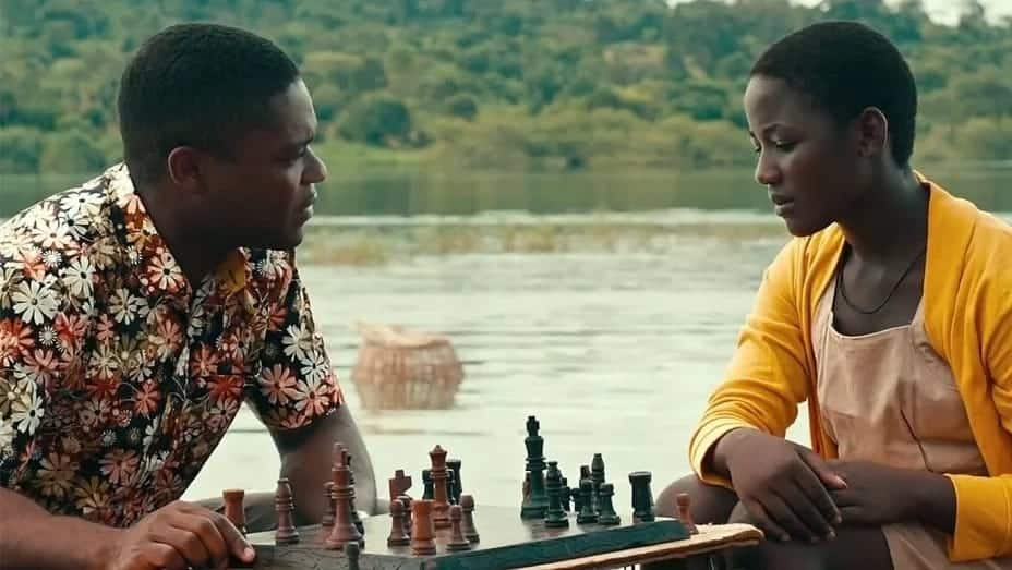 can pawns move backwards in chess what are the rules of chess chess board rules