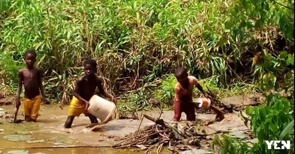 Children in A/R leave their classrooms to hunt for mud fish