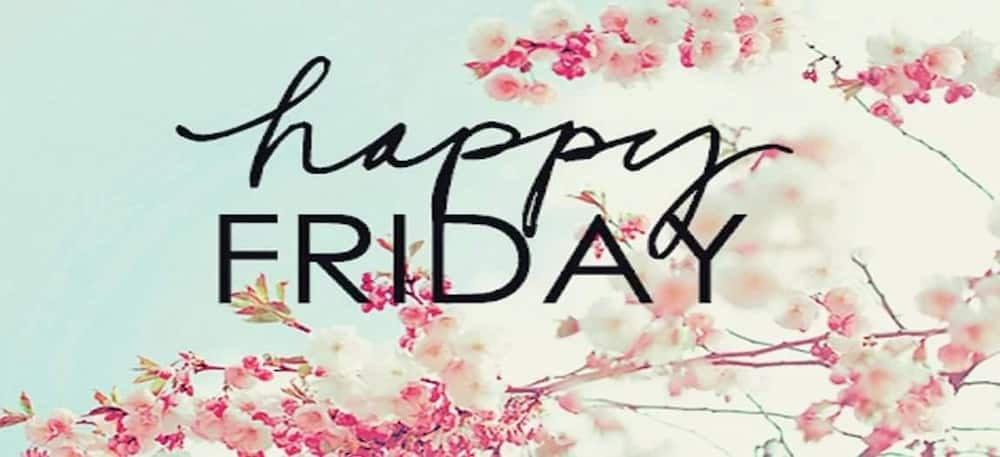 Friday work quotes inspirational quotes for Friday motivational quotes for Fridays