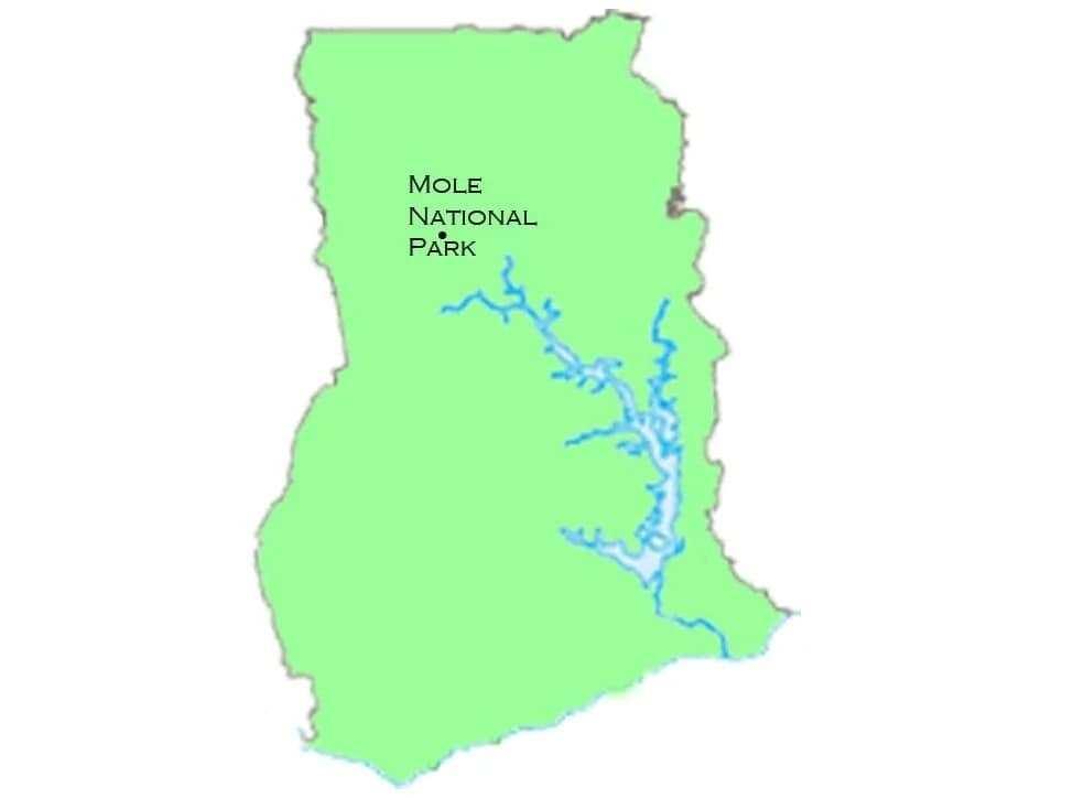 Mole National Park map