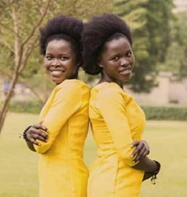 Meet Tammy Sisters, identical twin sisters who appear on the music scene with a big bang
