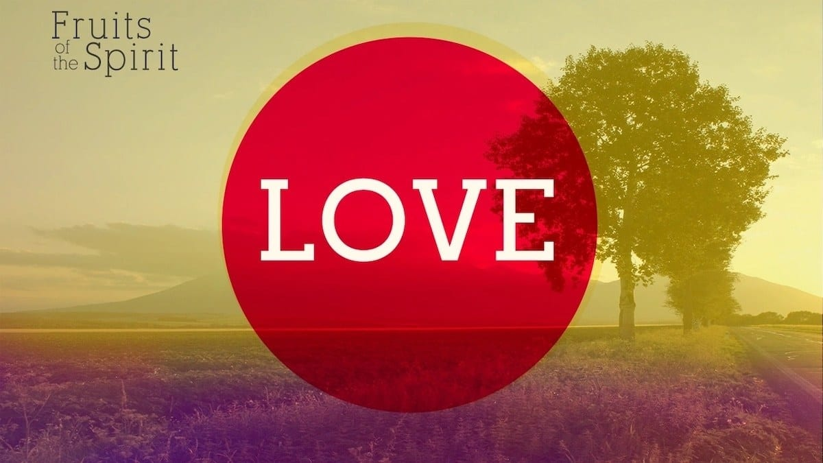 scriptures on love bible verses on love what does the bible say about love