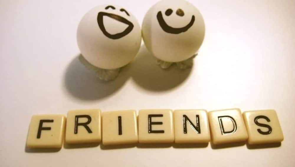 friendly messages message to a friend friendship sms
