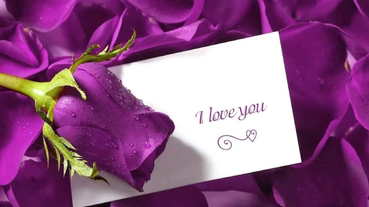 love text message i love you message loving you message sex quotes