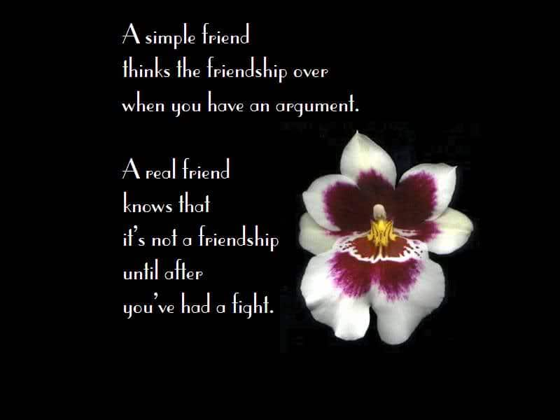 nice quotes images beautiful quotes for girls nice quotes on friendship
