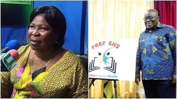 'Come and see me else Free SHS will collapse' – Akua Donkor tells Akufo-Addo